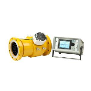Flow Computer SFC-3000 Flow Meter Group