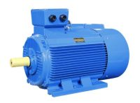 Our High Efficiency or Low Noise Electric Motor (PEM Series)